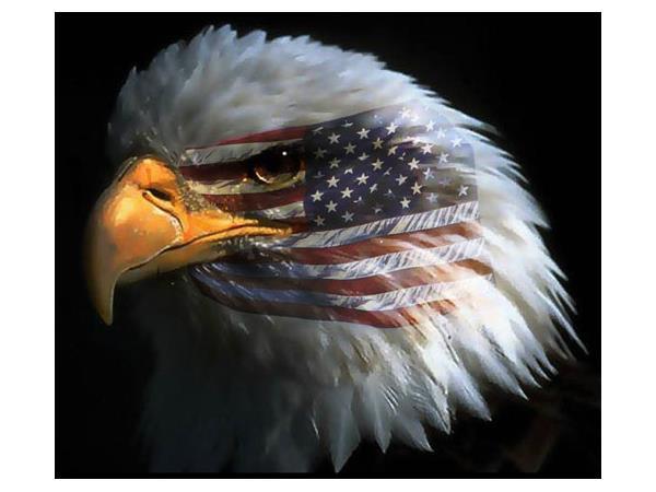 NORTH AMERICAN UNION NO