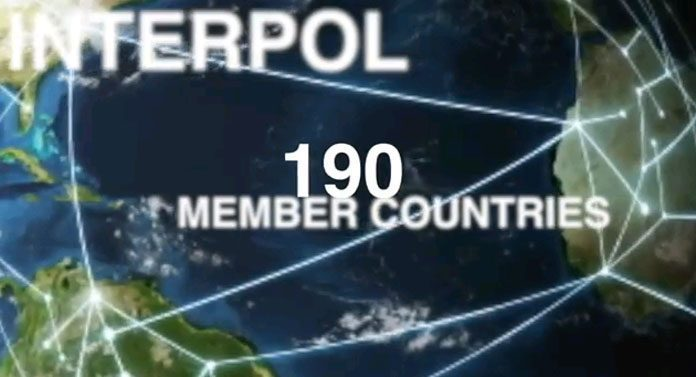 zzzzzzzzzzzzzzzzzzzzzzzzzzzzzzzzzzzzzzzzzzzzzzzzzzzzzzzzzzzzzzzzzzzzzzzzzzzzzzzzzzzzzAbout-the-INTERPOL-Trafficking-in-Illicit-Goods-programme