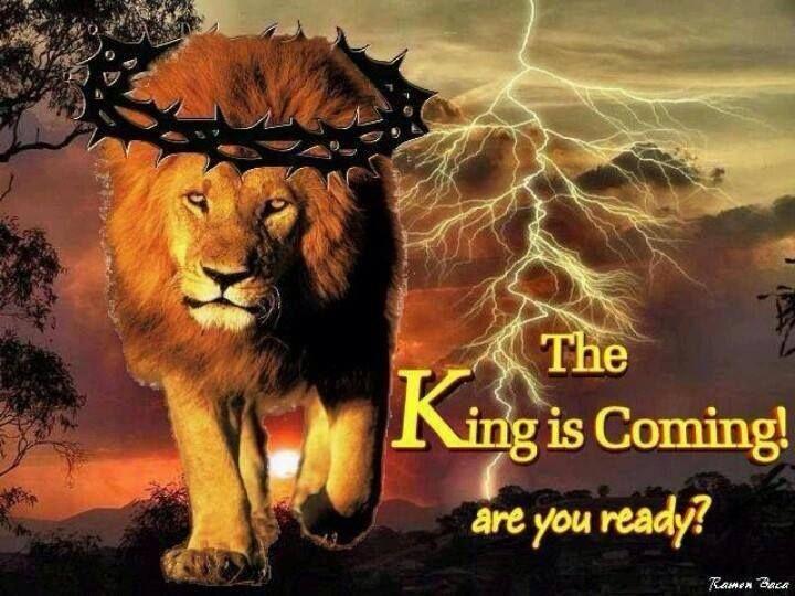 zzzzzzzzzzzzzzzzzzzzzzzzzzzzzzzzzzzzzzzzzzzzzzzzzzzzzzzzzzzzzzzzzzzzzzzzzzzz029147aca8f4adb85a4adae4ebee86e6--lions-lion-of-judah