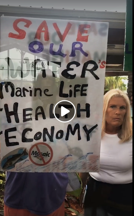 manatees protest