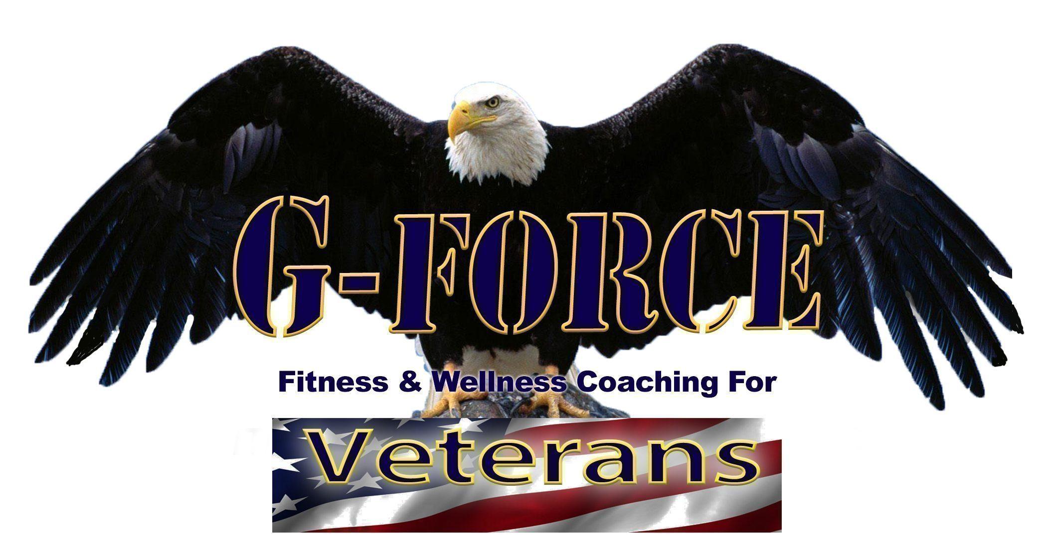 G-fORCE veterans logo final