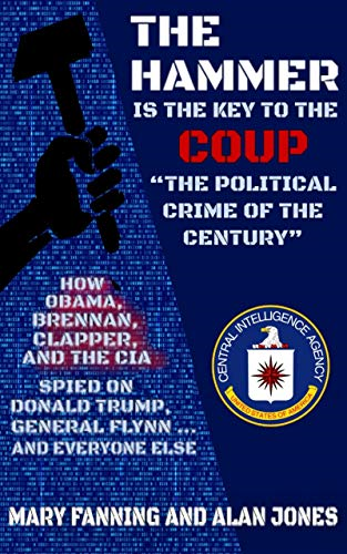 Lt. General MCINERNEY Says  This Is Treason! Coup Against The US Government! READ THE BOOK - THE HAMMER...