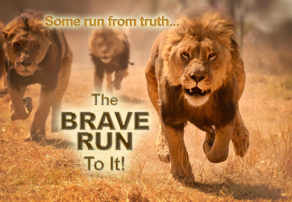 LIONS RISING...
