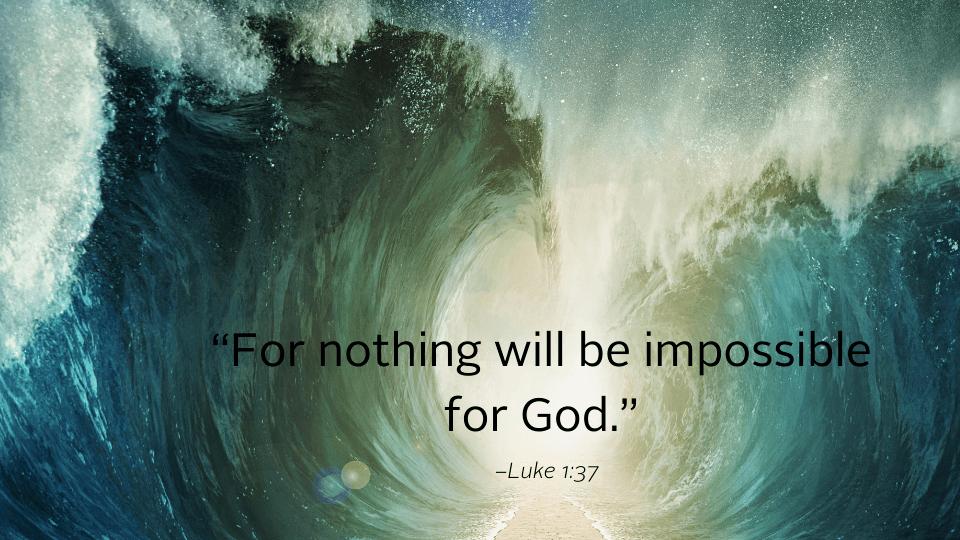 bible weekly reflection image 12.20 960x540 1