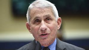 Image result for fauci