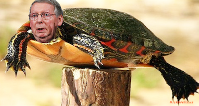 TRUMP CALLS OUT SWAMP TURTLE MCCONNELL!