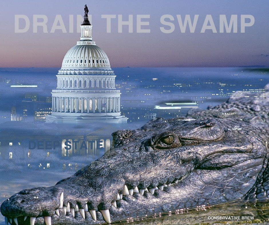 drain the swamp 1