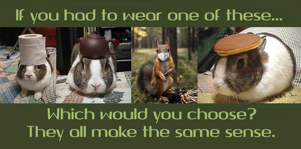 squirrel makes sense copy