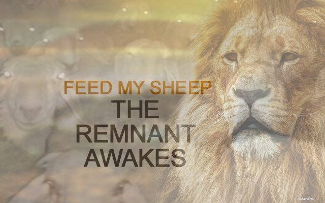 THE REMNANT IS AWAKENING...