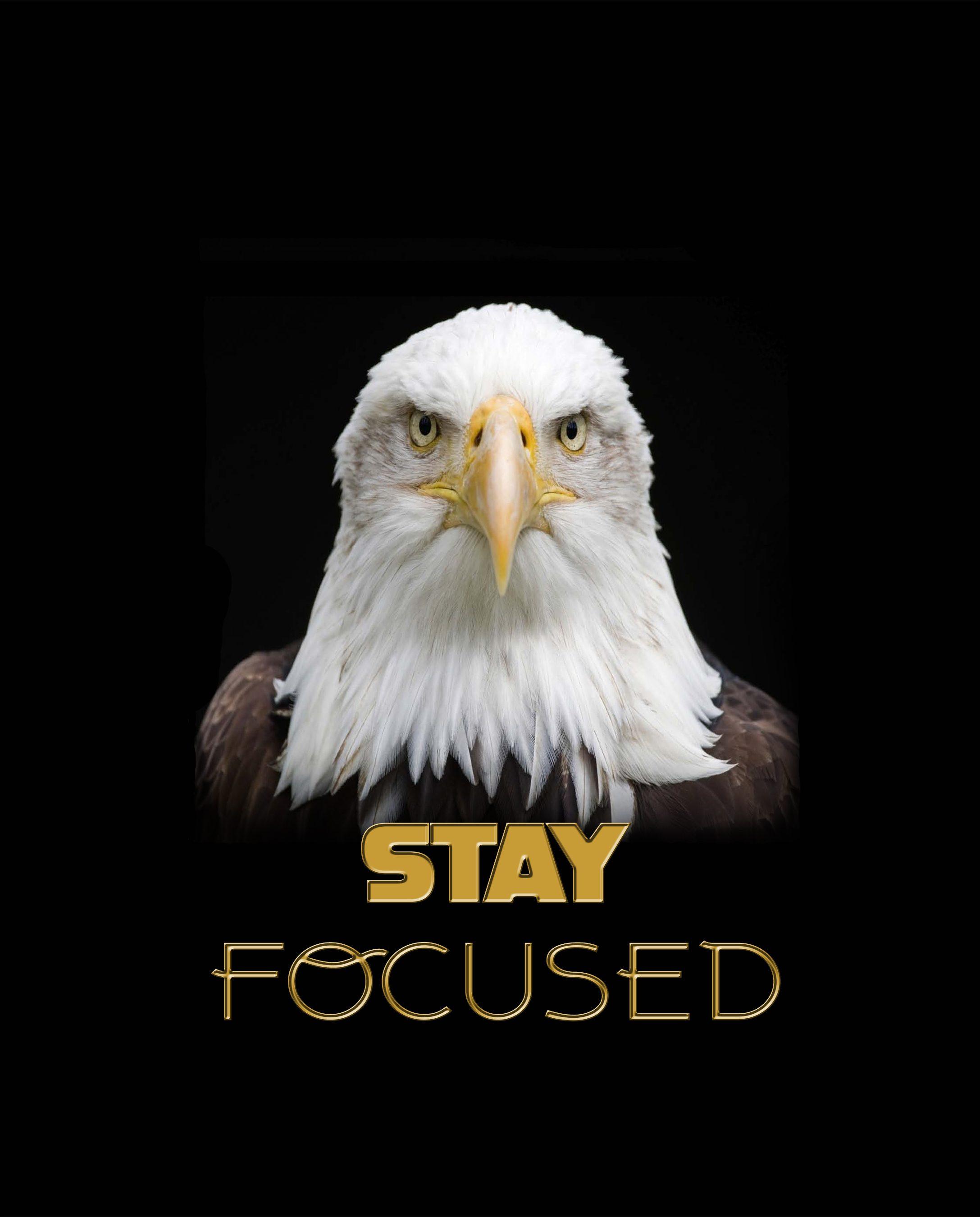 eagle poster copy