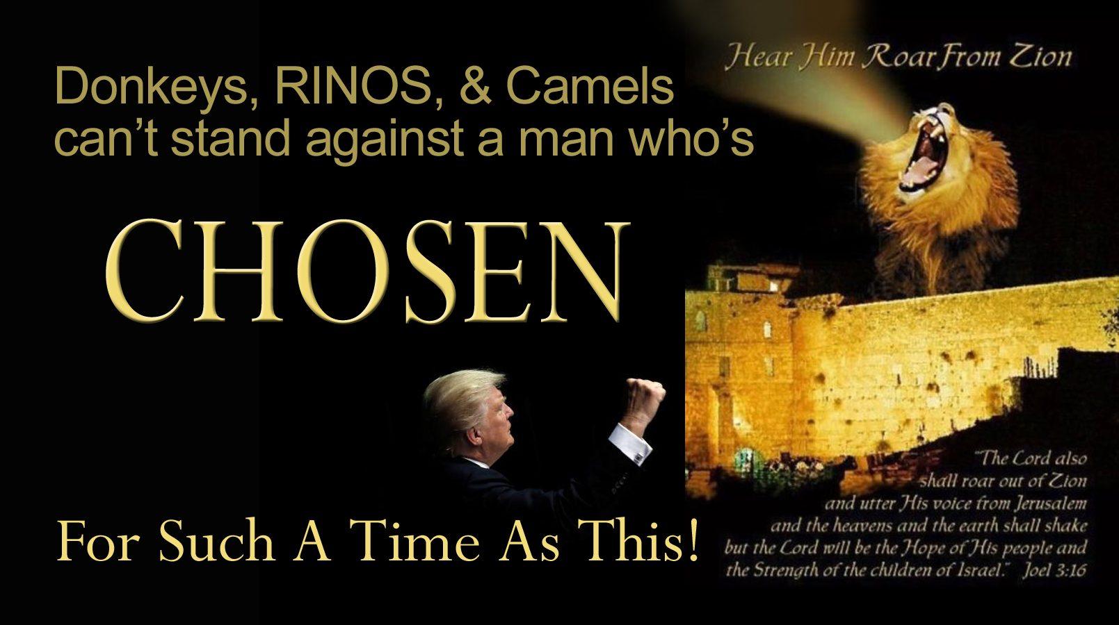 trump chosen 2 copy