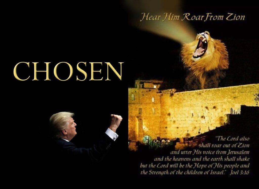 trump chosen