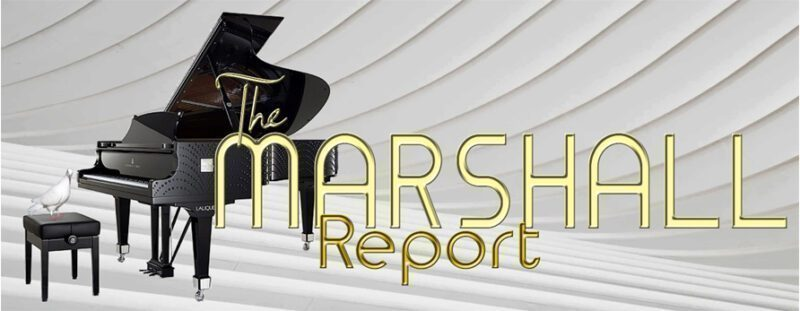 THE MARSHALL REPORT SMALL SIZE