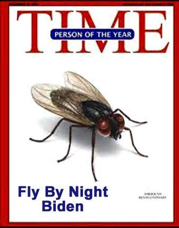 biden fly Untitled 4 copy