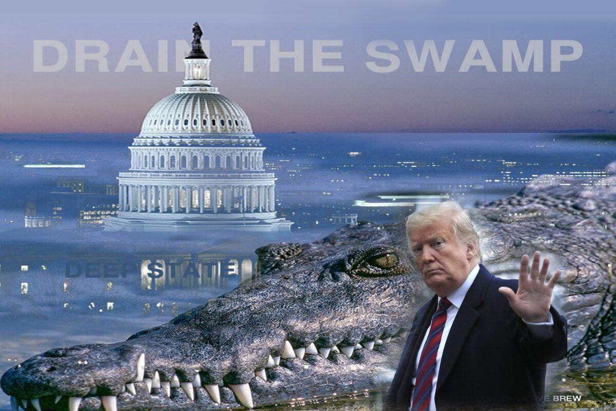 drain the swamp trump copy