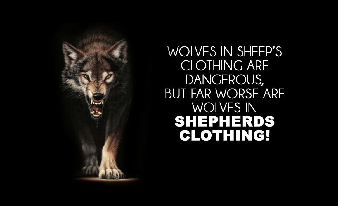 WOLVES IN