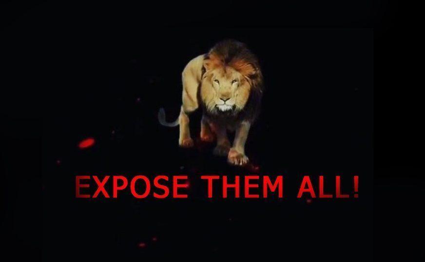 lion E1J8GVXWYAAMPPPPay copy